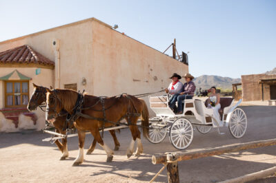 Old-Tucson-Wedding-18