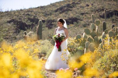 Sanctuary-Cove-Wedding-32
